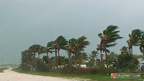 Tropical Storm Fay - In The Florida Keys